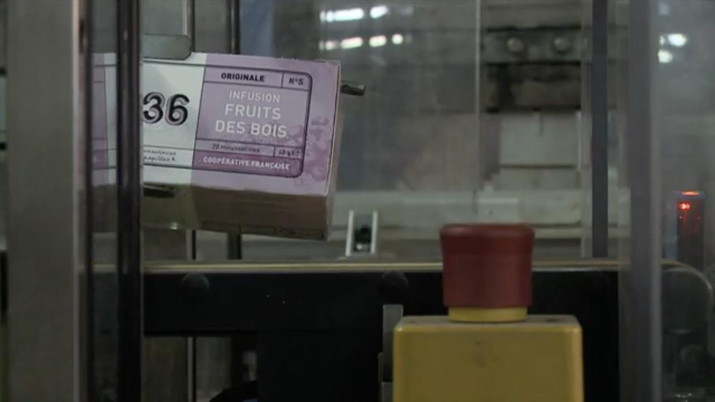 film-thé-1336-demain-l'usine