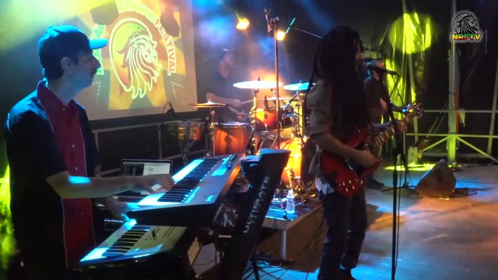 mellow-mood-bassiste-nomade-reggae-festival